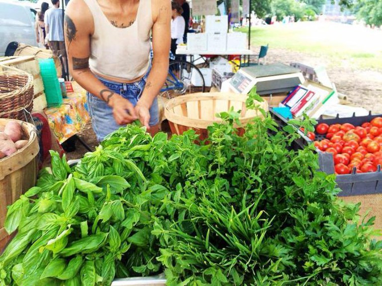 Locally Grown Produce | Courtesy Sustainable Food Center