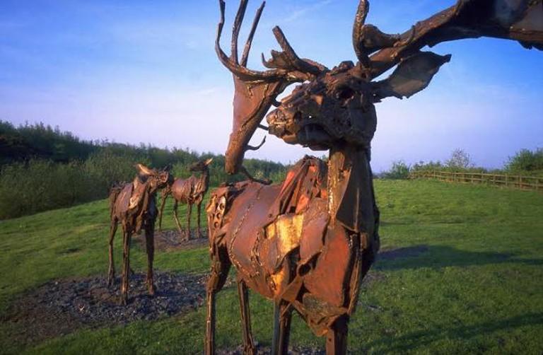 irish elks sculpture
