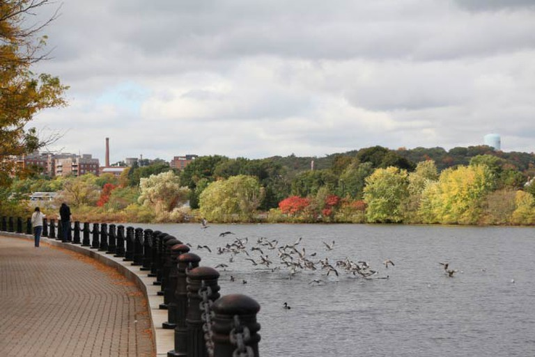 Charles River in Waltham | © Bill Damon/Flickr