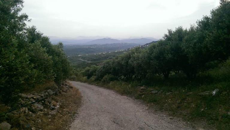 The verdant inland of Crete