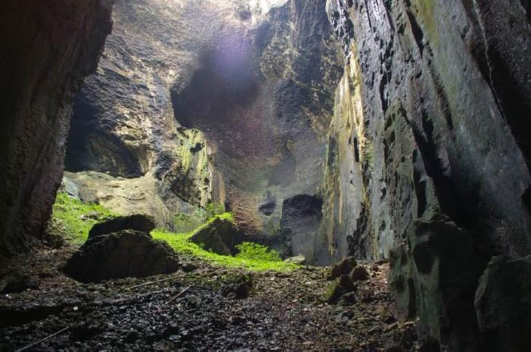 Bird's nest cave