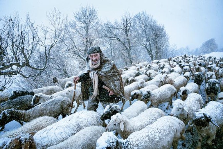 An old shepherd that had been surprised by snow storm in Gilan's countrysides in the north of Iran © Saeed Barikani, Iran, Islamic Republic of, Shortlist, People, Open Competition, 2015 Sony World Photography Awards