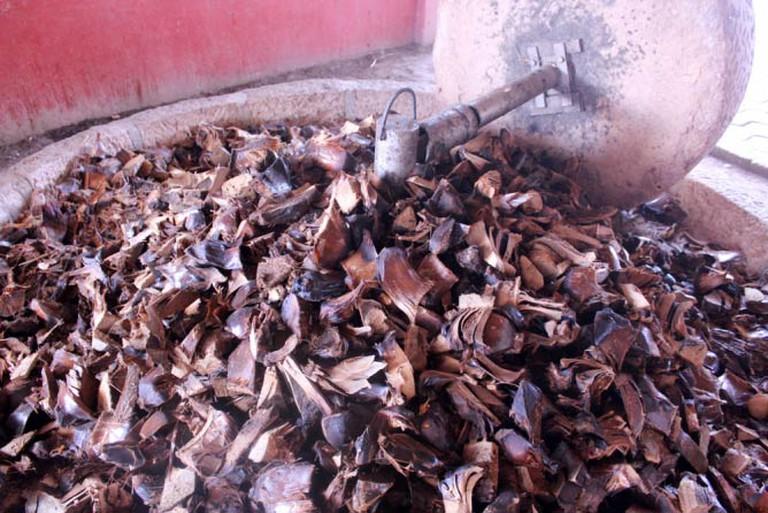 Roasted agave in stone mill (El Rey de Matatlan)