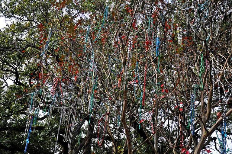 Mardi Gras Bead Tree in Lafayette, Louisiana