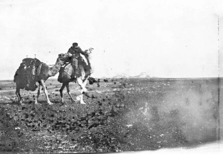 Photo X_013, Camels and man, Thlaithuwat, Jordan, January 1914 © The Gertrude Bell Archive, Newcastle University