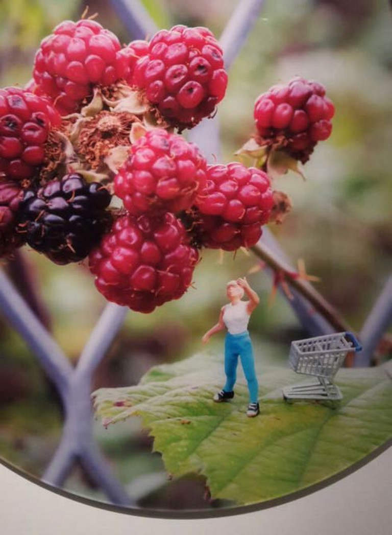 Foraging by Slinkachu| Image by Imme Dattenberg-Doyle
