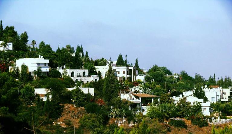 The Oasis of Peace | @MathKnight/WikiCommons