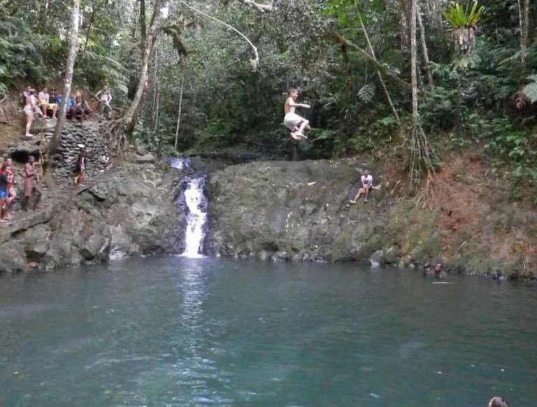 Colo-i-Suva Forest Park   © Hannah Bergin