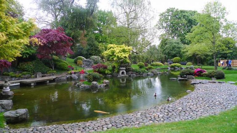 Japanese garden with a big pond and Asian trees