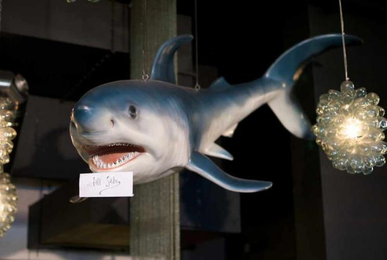 Shark for sale at Grill | © Rasmus Andersson/Flickr