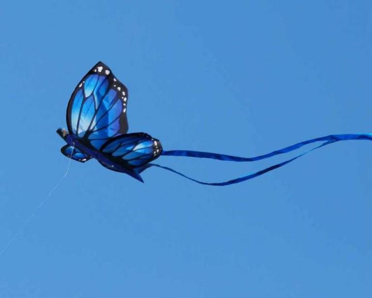 Blue Butterfly Kite © Jack Wolf/Flickr