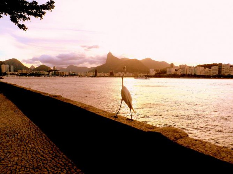 A view from Urca at sunset © arianemittidiere/Flickr