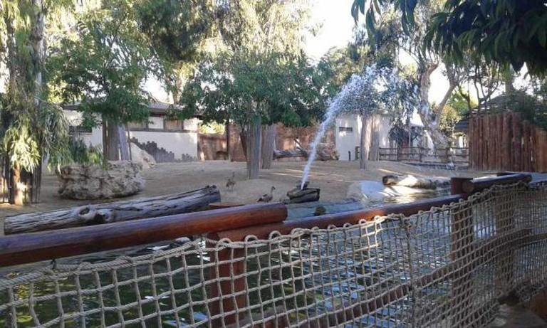 Limassol Zoo | © Xaris333/WikiCommons