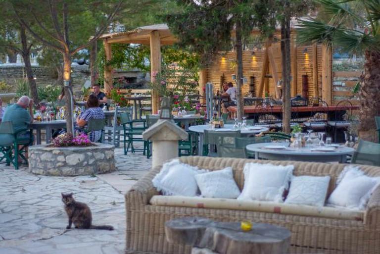 Dinner time in Zakynthos | Courtesy of Zakanthi