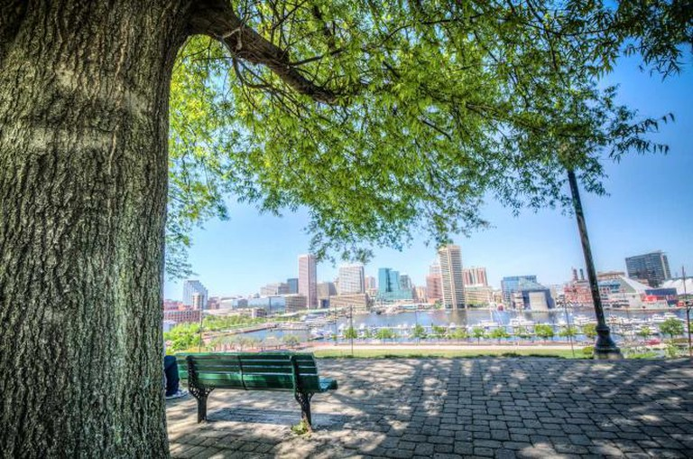 View of the Inner Harbor from Federal Hill Park |©m01229/Flickr
