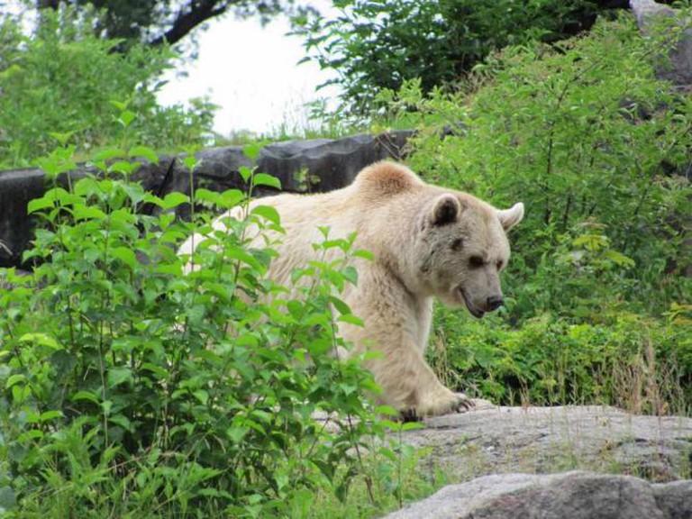 Stuttgart Wilhelma Zoo © Alex Jilitsky/Flickr