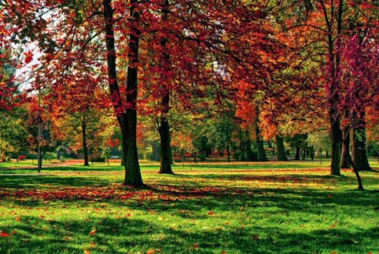 Kościuszko Park   © Szymon Pifczyk/Flickr