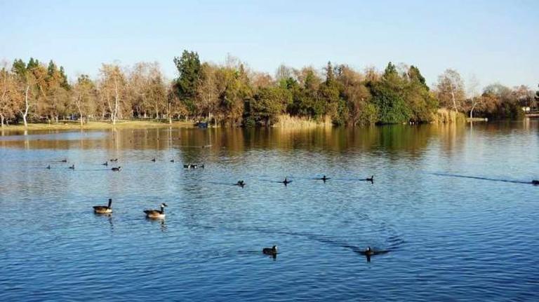 Legg Lake at Whittier Narrows   © Yelp