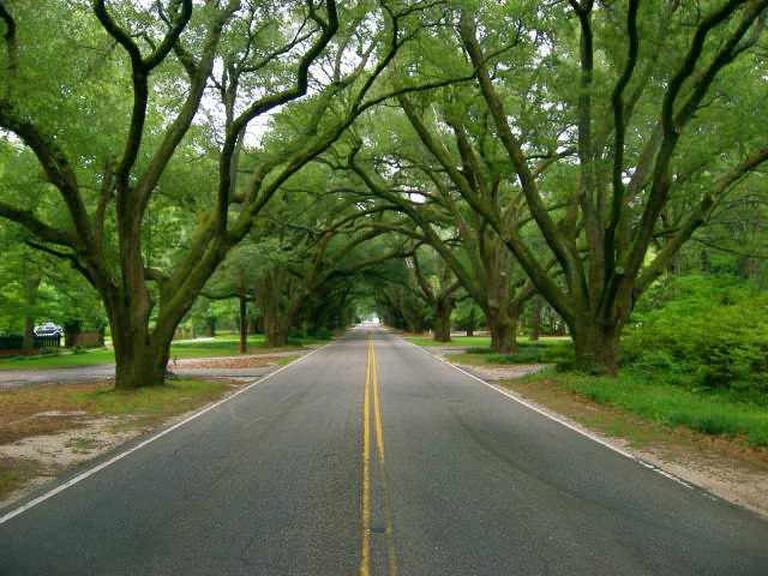 Boundry Street, Aiken