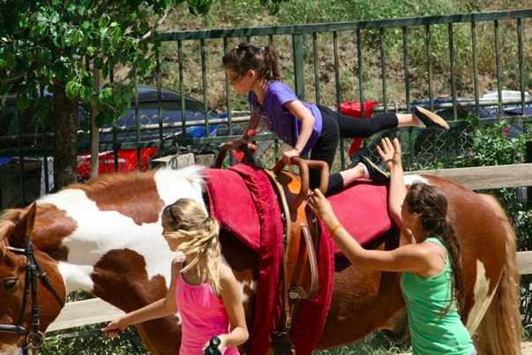 LA Equestrian Vaulting Club Clinic | © Los Angeles Equestrian Vaulting Club