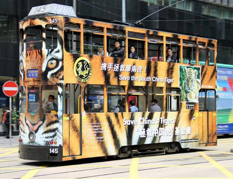 Hong Kong tramways © Christian Junker - AHKGAP/Flickr