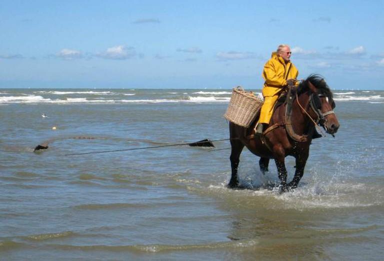 Shrimp-fisherman on horseback, Oostduinkerke| © David Edgar/WikiCommons