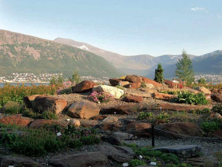 Tromsø Botaniske Hage © Kong Haralds/WikiCommons