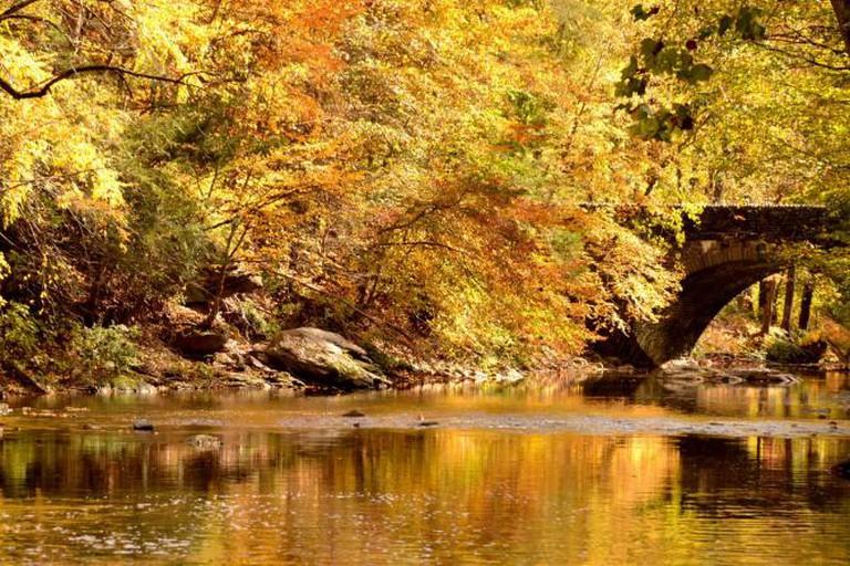 Wissahickon Creek flows through Wissahickon Park in the Roxborough/Manayunk area of Philadelphia.