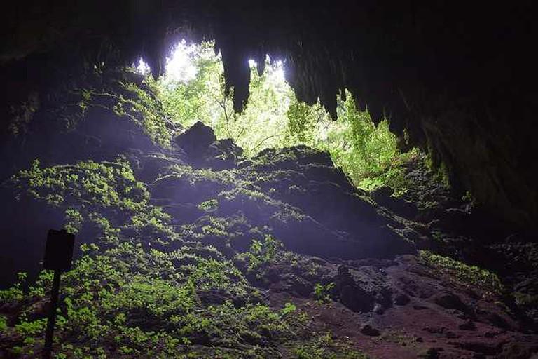 Rio Camuy Cave Park | © Todd Van Hoosear/Flickr