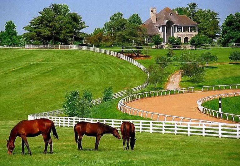 Donamire Farm, Lexington, Kentucky | © David Ohmer/Flickr