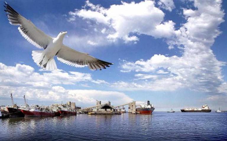 Bahía Blanca's port   Ⓒ IMO/Flickr