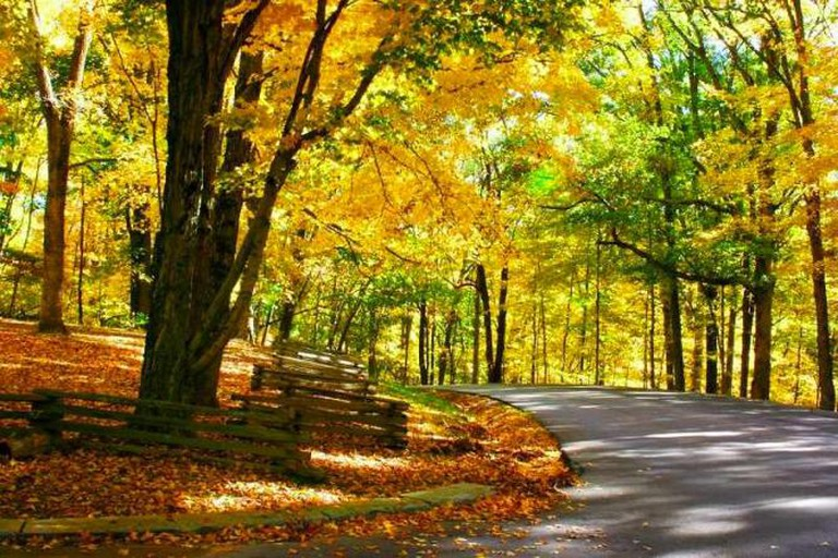 Autumn in the Brown County State Park near Nashville   Courtesy of Brown County Convention & Visitors Bureau