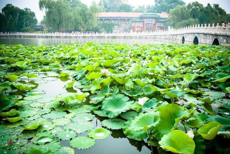 Beihai Park © Bryon Lippincott/Flickr