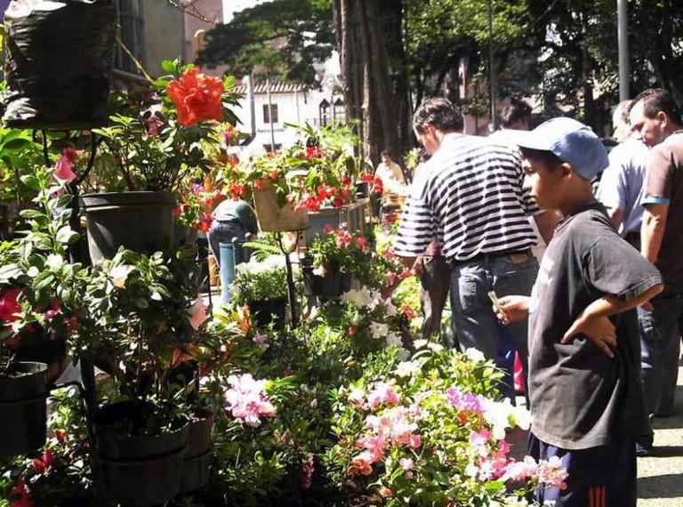 Mercado de Pulgas San Alejo