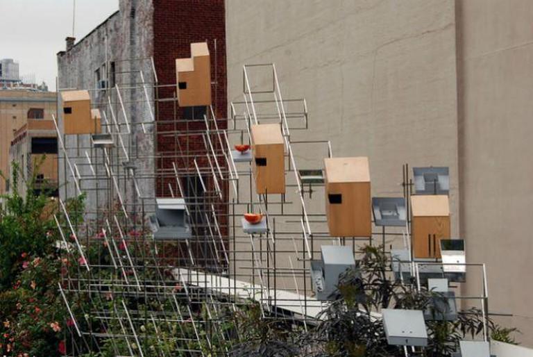 High Line_2012 05 04_0042 | © Harvey Barrison/Flickr