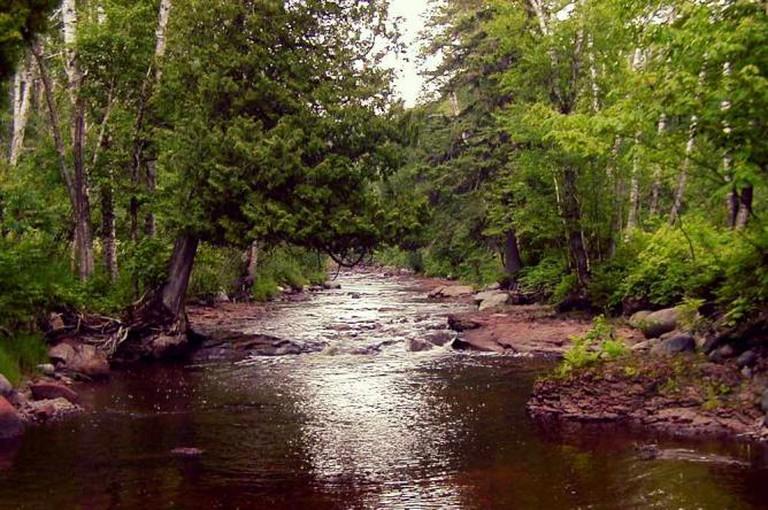 Reedy Creek Park © Pete Nelson/WikiCommons