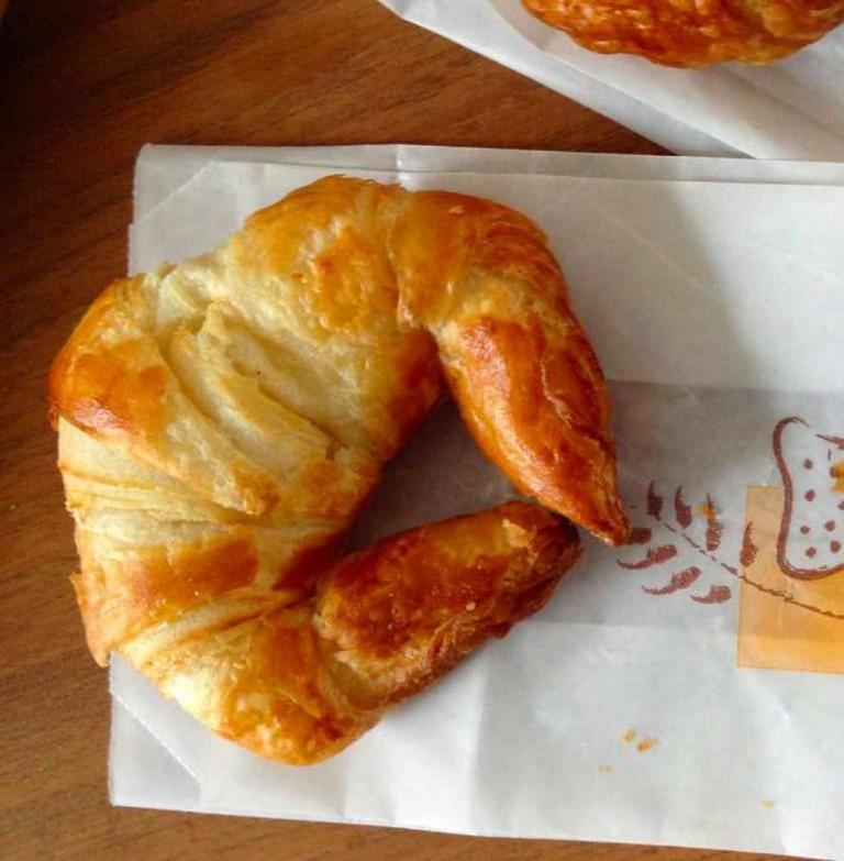 Le Paltoquet croissant | Anna Daneau