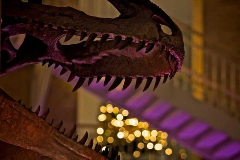 Fernbank Martinis and IMAX | © Greg Williams/Flickr