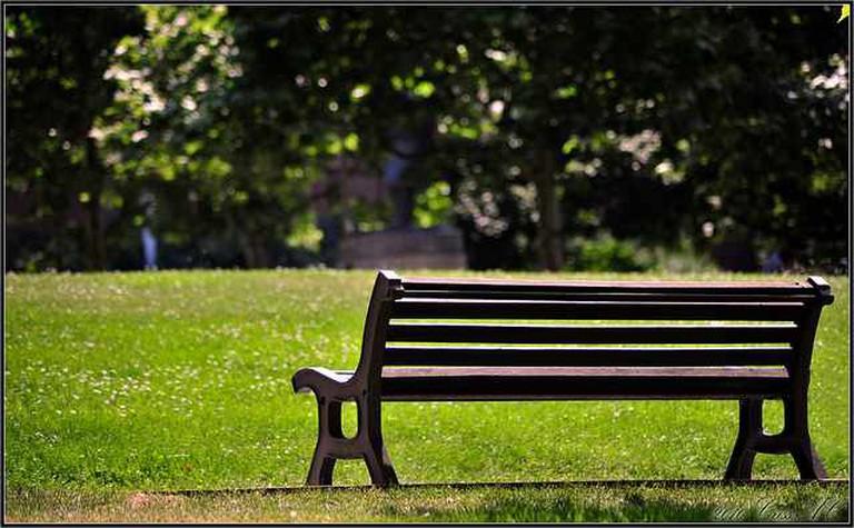 [Criss.AC] Bench in the sun|©Cristian N. MORMOLOC/ Flickr
