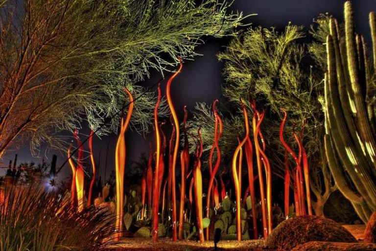 Desert Botanical Garden | © Right Brain Photography/Flickr