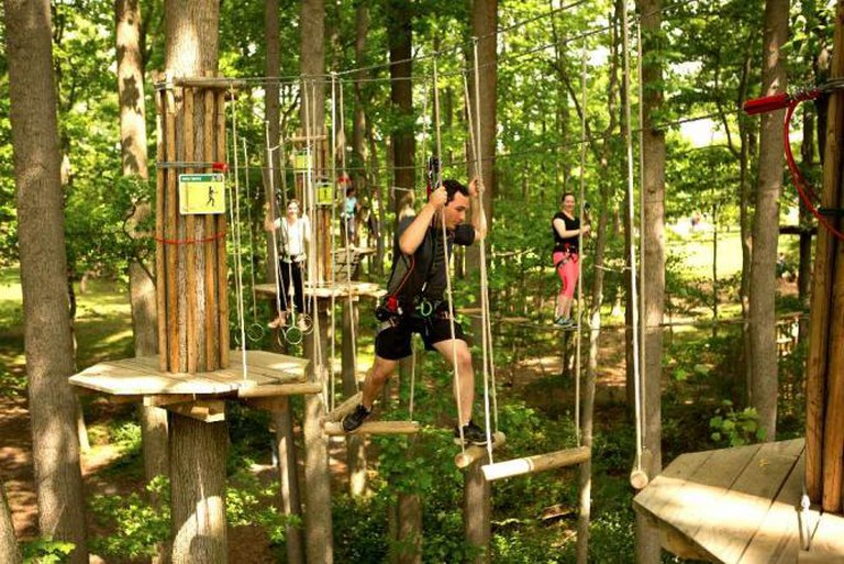 Ropes Course | Courtesy of Go Ape