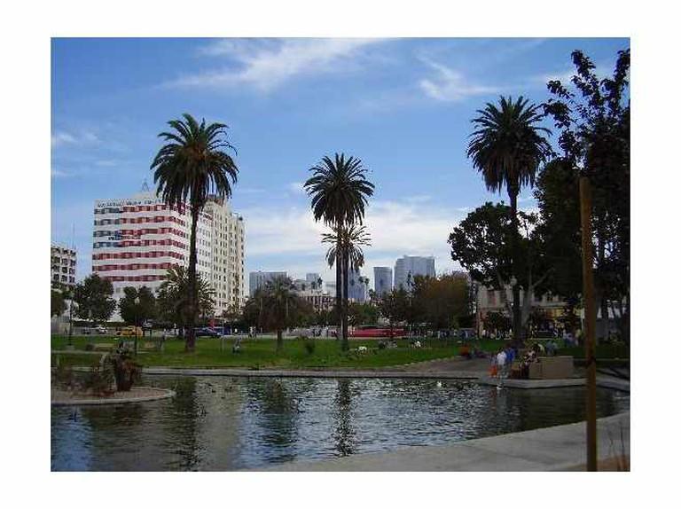 MacArthur Park, Los Angeles | © C. Marie Cradle