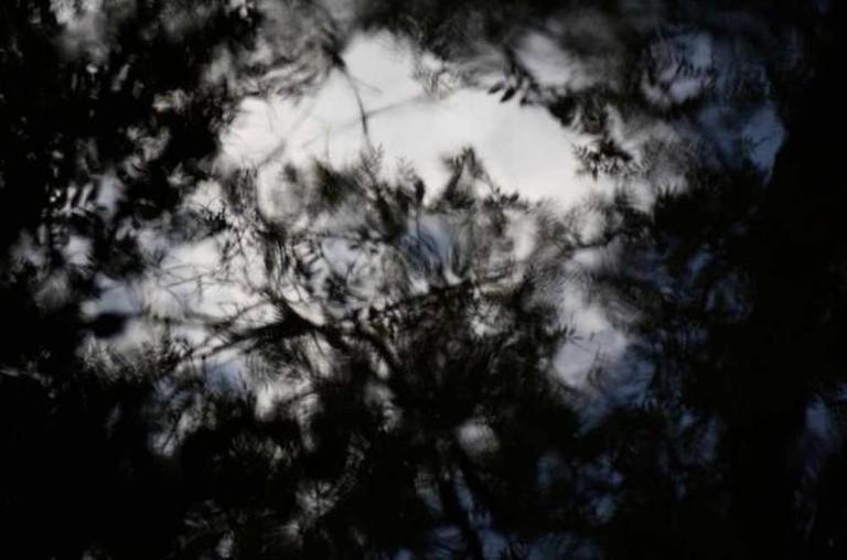 Reflection at Endcliffe Park | ©Tim Parkinson/flickr