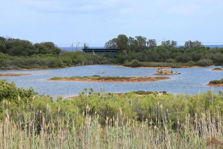 Ghadira Nature Reserve, restricted area within the L-Inħawi tal-Għadira at Triq il-Marfa in Mellieħa, Malta