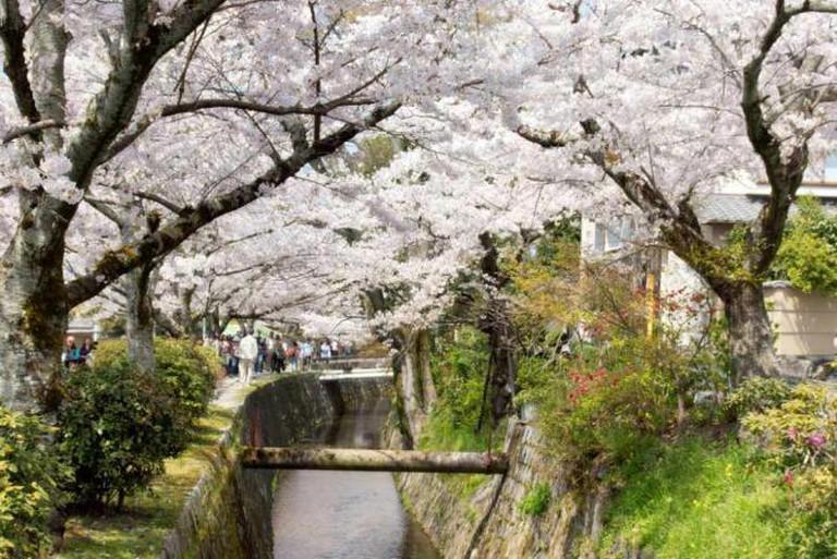 Tetsugaku no michi, Kyoto | © Kimon Berlin/Flickr