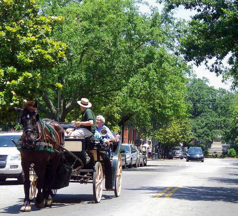 Carriage Tours of Savannah | ©‎ BEV Norton/Flickr