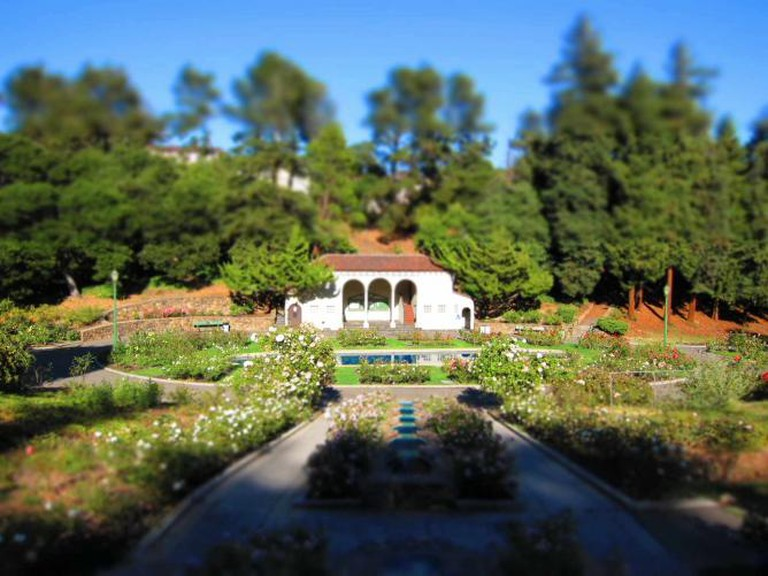 Morcom Rose Garden | © Hitchster/Flickr