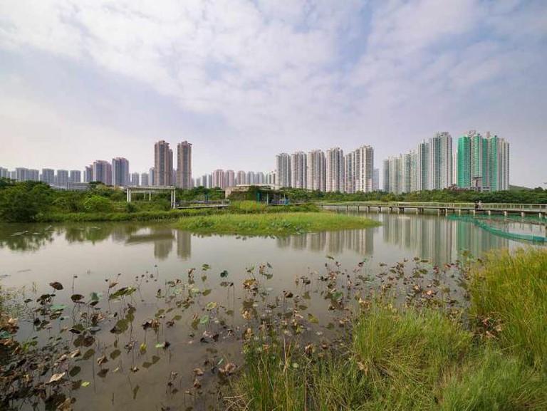 Hong Kong Wetland Park © かがみ~/Flickr