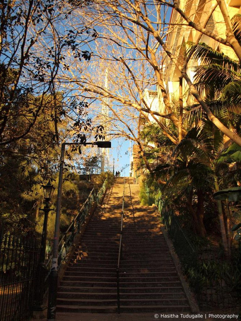 McElhone Stairs Potts Point Up