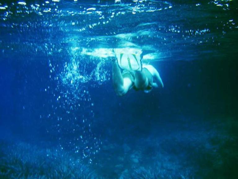 Fins under the Med © Tristan Ferne